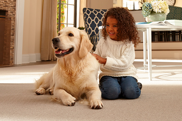 Put our experience to work for you! Let us help select the perfect flooring for your lifestyle and budget.